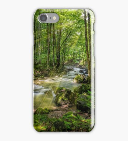 Mountain stream in green forest iPhone Case/Skin