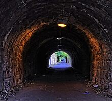 Old colliery wagon way by 242Digital