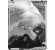 Zelda #1 iPad Case/Skin