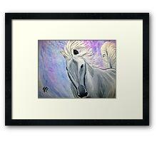Equine Ecstasy Framed Print