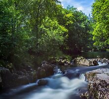 Summer River by Ian Mitchell