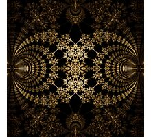 Golden Web Photographic Print