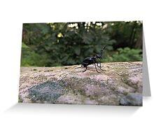Fabulous Beetle Greeting Card