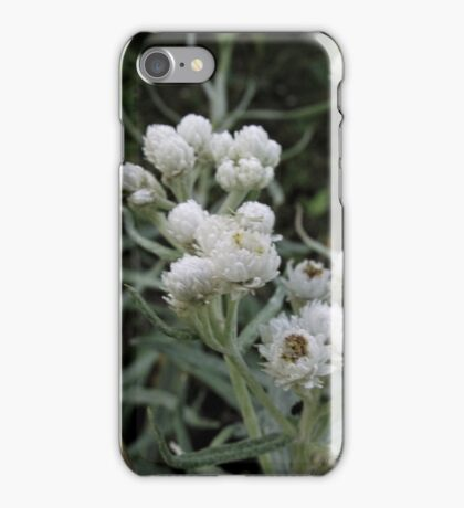 White Flowers Macro iPhone Case/Skin