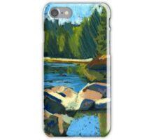 Belcarra. Inlet. Sunny summer iPhone Case/Skin