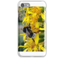 The Bee iPhone Case/Skin