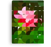 Pink Roses in Anzures 3 Abstract Circles 1 Canvas Print