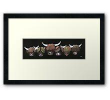 Herd O Hairys Framed Print