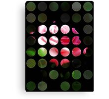 Pink Roses in Anzures 3 Art Circles 1 Canvas Print