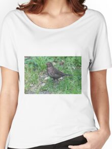 bird on the meadow Women's Relaxed Fit T-Shirt