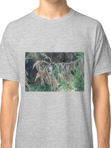 tree in the forest Classic T-Shirt