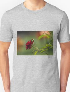 rose in the garden T-Shirt