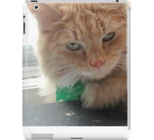 Touch me if you dare iPad Case/Skin