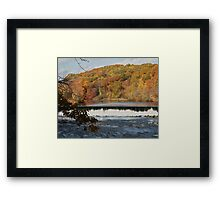 Late Autumn Framed Print