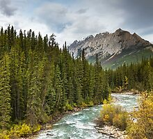 OF RIVERS AND MOUNTAINS by Sandy Stewart