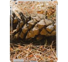 cone in the forest iPad Case/Skin