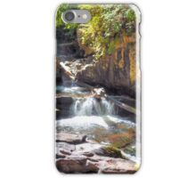 Chattooga River iPhone Case/Skin