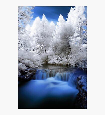 Kerosine creek in infrared 2 Photographic Print