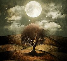 Once upon a time... The lone tree. by Viviana Gonzalez