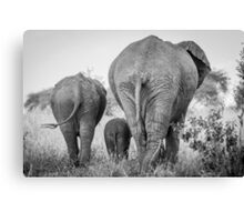 We are family  Canvas Print