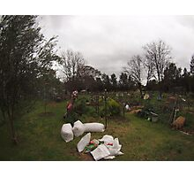 Community garden Canberra Photographic Print