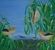 Forty Spotted Pardalotes Oil painting by Andrew Bonnitcha by Andrew Bonnitcha