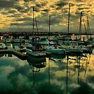 Bay Dreamin' by Barbara  Brown