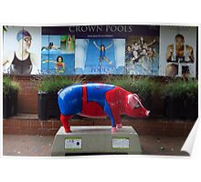 Spider Pig Visits Crown Pools, Ipswich Poster