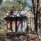 Hut of Timber & Corrugated Iron - Tuena by Marilyn Harris