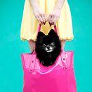 Doggie Bag by Kelly Nicolaisen