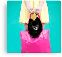 Doggie Bag Canvas Print