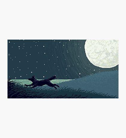 Midnight Moon Photographic Print