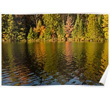 Colorful Ripples - Forest Lake in Autumn Poster