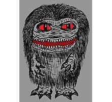Critter Photographic Print