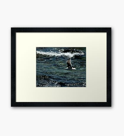 Off Newport Framed Print