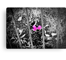 Pink Ribbon  Metal Print