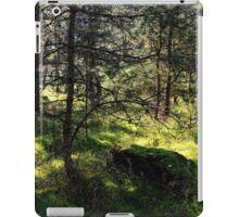 Sunny Woods iPad Case/Skin