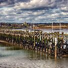 The End Of The Jetty by Vicki Field