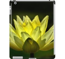 Yellow Water Lily, Backlit. iPad Case/Skin