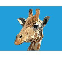 Proud Giraffe  Photographic Print