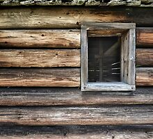 Log Cabin by cclaude
