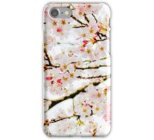 Pink Cherry Blossoms iPhone Case/Skin