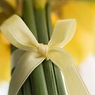 Ribbon Tied Daffodils by Ellesscee