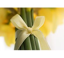 Ribbon Tied Daffodils Photographic Print