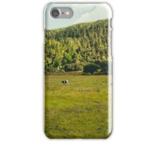 Lounging cattle iPhone Case/Skin