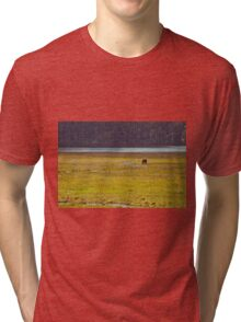 Lonely horse Tri-blend T-Shirt