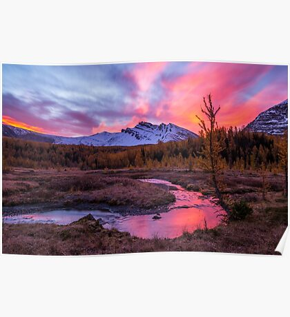 Sunrise over the creek Poster