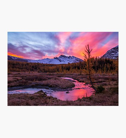 Sunrise over the creek Photographic Print