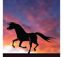 Horse silhouette galloping at sunrise or sunset Photographic Print