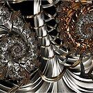 Asymmetric Bifurcation by Ross Hilbert